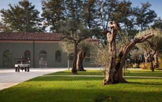 Parco del Museo Agorà Orsi Coppini (Foto: Gepri)