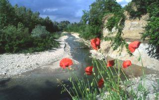 Parco dello Stirone -Scipione