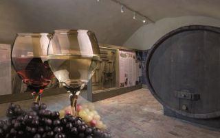 Sala Baganza, Museo Del Vino, Sala delle Botti (Foto L. Rossi)