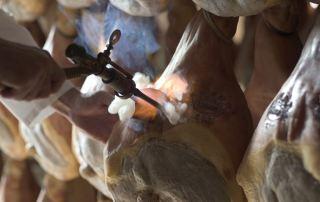 Marchiatura del Prosciutto di Parma (Foto: Consorzio Prosciutto)