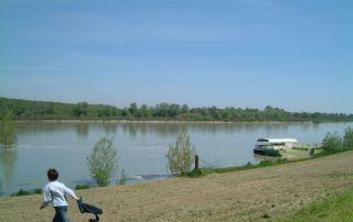 Polesine, riva del fiume Po (Foto: Amigoni)